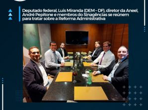 Deputado Federal Luis Miranda (DEM – DF), André Pepitone, diretor da Aneel, e membros do Sinagências se reúnem para tratar sobre a Reforma Administrativa